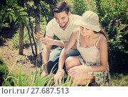 Купить «Couple seedling garden flowers», фото № 27687513, снято 19 марта 2019 г. (c) Яков Филимонов / Фотобанк Лори