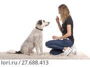 Купить «girl girls dog obedient watchful», фото № 27688413, снято 27 апреля 2018 г. (c) PantherMedia / Фотобанк Лори