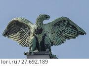 Купить «imperial eagle (frankfurt main main station)», фото № 27692189, снято 19 марта 2019 г. (c) PantherMedia / Фотобанк Лори