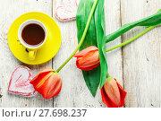 Купить «Morning tea and tulips», фото № 27698237, снято 26 июня 2019 г. (c) PantherMedia / Фотобанк Лори
