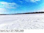 Купить «The frozen lake. Spruce forest in winter. Winter landscape», фото № 27700249, снято 14 марта 2015 г. (c) Евгений Ткачёв / Фотобанк Лори