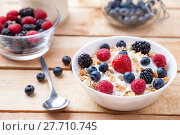 Купить «Healthy and nutritious yoghurt with cereal and fresh raw berries», фото № 27710745, снято 1 апреля 2020 г. (c) PantherMedia / Фотобанк Лори