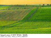 Купить «Beautiful green sping rural landscape», фото № 27721205, снято 27 июня 2019 г. (c) PantherMedia / Фотобанк Лори