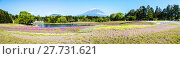 Купить «Fuji with the field of pink moss at Shibazakura festival, Yamanashi, Japan», фото № 27731621, снято 17 июля 2019 г. (c) PantherMedia / Фотобанк Лори