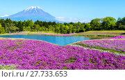 Купить «Fuji with the field of pink moss at Shibazakura festival, Yamanashi, Japan», фото № 27733653, снято 17 июля 2019 г. (c) PantherMedia / Фотобанк Лори