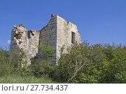 Купить «houses ruins croatia disappear expire», фото № 27734437, снято 24 октября 2019 г. (c) PantherMedia / Фотобанк Лори