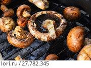 Купить «Brown champignons mushrooms on grill», фото № 27782345, снято 17 июля 2019 г. (c) PantherMedia / Фотобанк Лори