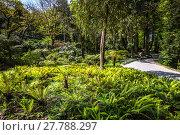Купить «garden of eden garden located in sintra,portugal», фото № 27788297, снято 19 октября 2018 г. (c) PantherMedia / Фотобанк Лори
