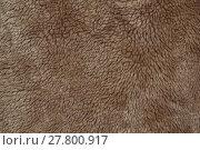 Купить «fleecy fabric texture», фото № 27800917, снято 21 апреля 2018 г. (c) PantherMedia / Фотобанк Лори