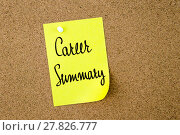 Купить «Career Summary written on yellow paper note», фото № 27826777, снято 23 мая 2019 г. (c) PantherMedia / Фотобанк Лори