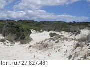 Купить «sand dunes on spanish beach», фото № 27827481, снято 20 сентября 2018 г. (c) PantherMedia / Фотобанк Лори