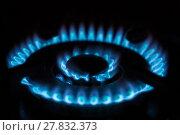 Купить «gas flame burns», фото № 27832373, снято 19 июля 2019 г. (c) PantherMedia / Фотобанк Лори