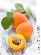 Купить «Fresh ripe apricots .», фото № 27837597, снято 20 июня 2018 г. (c) PantherMedia / Фотобанк Лори