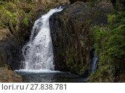 Купить «Crystal Cascades, Cairns», фото № 27838781, снято 19 августа 2019 г. (c) PantherMedia / Фотобанк Лори