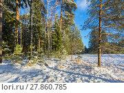 Купить «Зимний пейзаж с заснеженными деревьями на краю поля», фото № 27860785, снято 8 января 2018 г. (c) Сергей Васильев / Фотобанк Лори