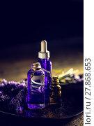 Купить «Aromatherapy oil», фото № 27868653, снято 24 февраля 2018 г. (c) PantherMedia / Фотобанк Лори
