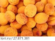 Купить «Background of fresh ripe apricots close up», фото № 27871381, снято 20 июля 2019 г. (c) PantherMedia / Фотобанк Лори