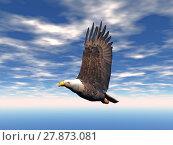 Купить «beak eagle raptor claws feathering», фото № 27873081, снято 17 декабря 2018 г. (c) PantherMedia / Фотобанк Лори