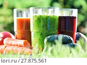 Купить «Glasses with fresh organic detox juices in the garden», фото № 27875561, снято 23 июля 2019 г. (c) PantherMedia / Фотобанк Лори