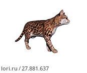 Купить «ocelot schleich cat isolated», фото № 27881637, снято 19 июля 2019 г. (c) PantherMedia / Фотобанк Лори