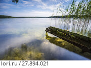Купить «fallen trees on the edge of a lake with reflection of the beautiful clouds in the water», фото № 27894021, снято 23 января 2020 г. (c) PantherMedia / Фотобанк Лори