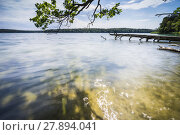 Купить «fallen trees on the edge of a lake with reflection of the beautiful clouds in the water», фото № 27894041, снято 25 марта 2019 г. (c) PantherMedia / Фотобанк Лори