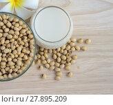 Купить «Fresh Soy milk (Soya milk) in a glass and soybean seeds», фото № 27895209, снято 21 февраля 2018 г. (c) PantherMedia / Фотобанк Лори