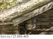 Купить «Mossy Roof on Timber Lodge», фото № 27895405, снято 18 января 2019 г. (c) PantherMedia / Фотобанк Лори