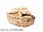 Купить «Single  walnut with half nutshell  isolated on white background», фото № 27895469, снято 27 мая 2018 г. (c) PantherMedia / Фотобанк Лори