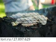 Купить «Grilling chicken wings on the grill over burning and smoking coals», фото № 27897629, снято 16 февраля 2019 г. (c) PantherMedia / Фотобанк Лори