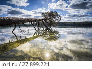 Купить «nature beauty water light holiday», фото № 27899221, снято 23 января 2020 г. (c) PantherMedia / Фотобанк Лори