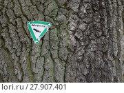 Купить «natural monument sign at a centuries-old eichenbaun», фото № 27907401, снято 23 февраля 2018 г. (c) PantherMedia / Фотобанк Лори