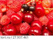 Купить «Closeup of red fruit», фото № 27937461, снято 16 февраля 2019 г. (c) PantherMedia / Фотобанк Лори