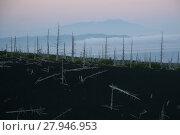 Купить «Kunasir Kurils islands Rocks Russia», фото № 27946953, снято 22 марта 2019 г. (c) PantherMedia / Фотобанк Лори