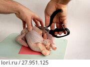 Купить «Scissors for cutting of chicken», фото № 27951125, снято 26 апреля 2018 г. (c) PantherMedia / Фотобанк Лори
