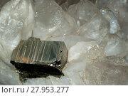 Large rectangular pyrite crystal among quartz crystals closeup. Стоковое фото, фотограф Евгений Харитонов / Фотобанк Лори
