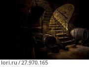 Купить «Wine cellar in low light», фото № 27970165, снято 23 февраля 2018 г. (c) PantherMedia / Фотобанк Лори