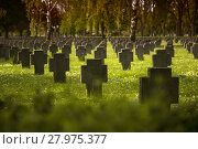 Купить «soldiers graves in meadow in front of forest with blurred foreground», фото № 27975377, снято 23 июля 2019 г. (c) PantherMedia / Фотобанк Лори