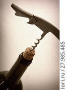 Купить «Corkscrew in stopper from bottle of red wine», фото № 27985485, снято 12 января 2013 г. (c) Юрий Бизгаймер / Фотобанк Лори