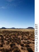 Купить «Portrait - Mountains with blue sky and yellow fields - Cradock», фото № 27989697, снято 21 февраля 2019 г. (c) PantherMedia / Фотобанк Лори