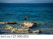 Купить «island of vir,croatia», фото № 27990653, снято 14 ноября 2018 г. (c) PantherMedia / Фотобанк Лори