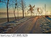 Купить «Winter walkwy with frost», фото № 27995929, снято 17 июля 2019 г. (c) PantherMedia / Фотобанк Лори