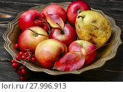 Купить «Apples in vase for fruits», фото № 27996913, снято 28 февраля 2020 г. (c) PantherMedia / Фотобанк Лори