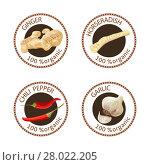 Купить «Set of spices labels. 100 organic. collection», фото № 28022205, снято 23 января 2020 г. (c) PantherMedia / Фотобанк Лори