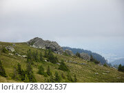 Купить «conifers and rocks on green-brown grass on a mountain pasture in front of cloudy sky on the weinebene koralpe in styria», фото № 28022537, снято 20 марта 2019 г. (c) PantherMedia / Фотобанк Лори