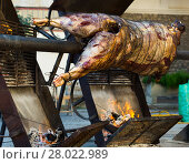 Купить «Whole bull on spit», фото № 28022989, снято 24 марта 2019 г. (c) Яков Филимонов / Фотобанк Лори