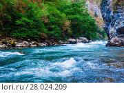 Купить «Beautiful view of mountain river in summer. Mountain river in the forest. Abkhazia. Beutiful landscape», фото № 28024209, снято 16 июня 2019 г. (c) PantherMedia / Фотобанк Лори