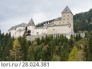 Купить «historic castle moosham - austria», фото № 28024381, снято 27 марта 2019 г. (c) PantherMedia / Фотобанк Лори