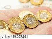 Купить «Polish Zloty, close-up», фото № 28035981, снято 22 июля 2018 г. (c) PantherMedia / Фотобанк Лори