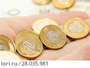 Купить «Polish Zloty, close-up», фото № 28035981, снято 16 октября 2018 г. (c) PantherMedia / Фотобанк Лори